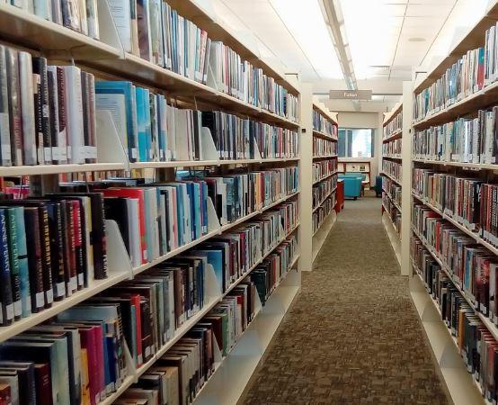 """Biblioteka Grudziądz: """"Odjazdowy Bibliotekarz"""""""