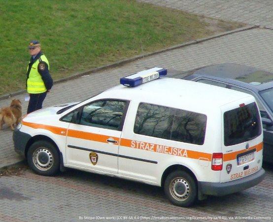 SM Grudziądz: Strażnicy prowadzą kontrole w autobusach